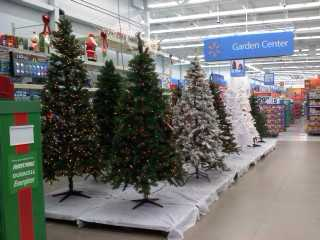 Christmas Trees line the center of the garden center in the Latrobe Walmart in early October.