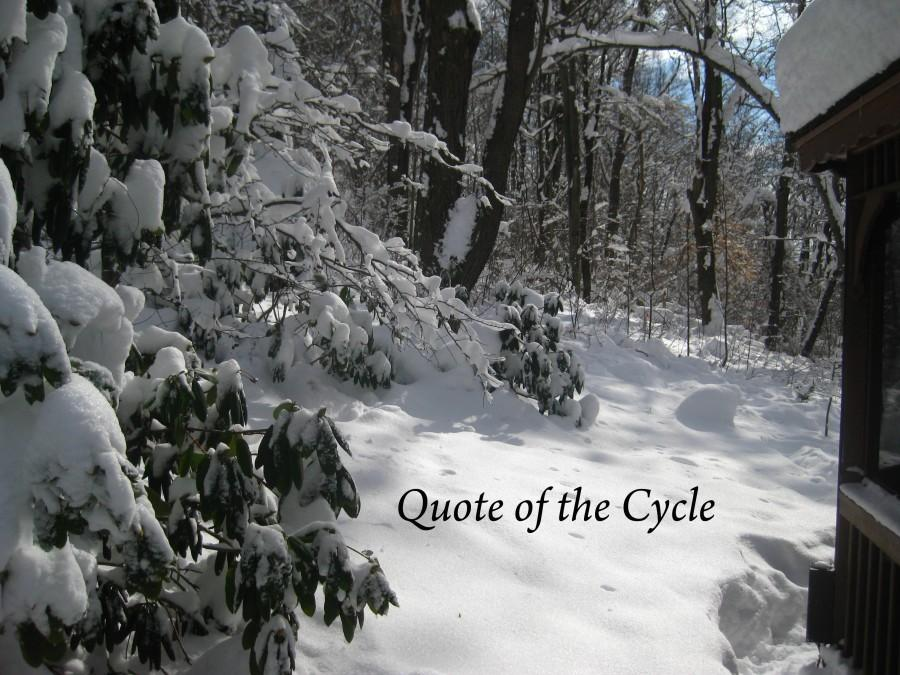 Quote+of+the+Cycle