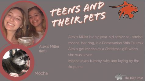 Teens and Their Pets - Alexis Miller