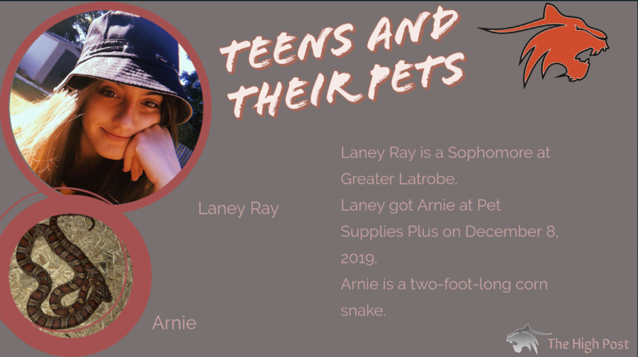 Teens and Their Pets - Laney Ray