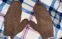 Fabric Arts Designers Create Holiday Mittens