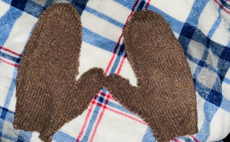 Fabric Arts Designers Create Holiday Mittens